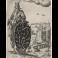 Diseño ornamental con rey que sostiene un escudo con vainas de guisante a la Maniera Nera